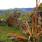 Muros de vivienda bien conservados
