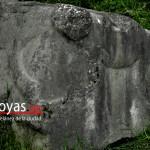 Evidencia de depredación de Pumachaka
